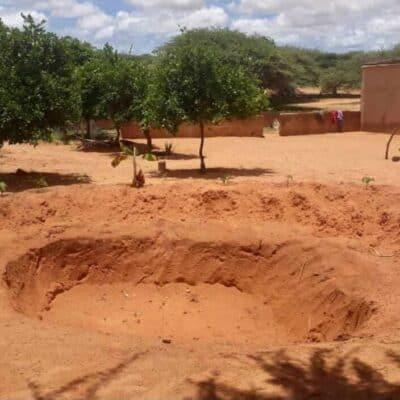 Coltivare senz'acqua in un terreno sabbioso