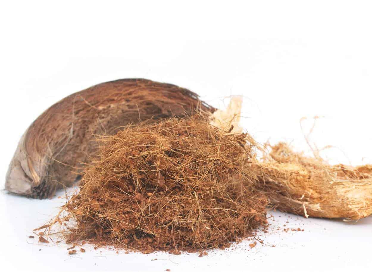 cocco, fibre